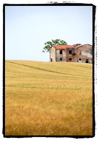 coltona3.jpg