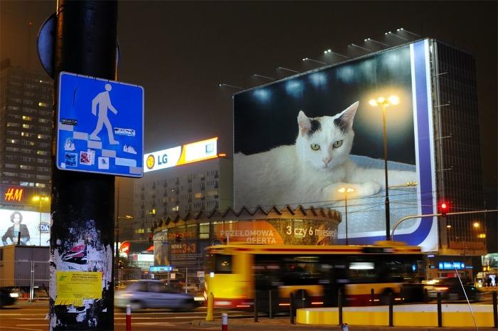 PF_Night_Street_21062012212856536.jpg