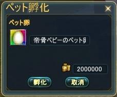 20120506(帝骨ベビー孵化)