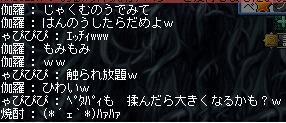 Maple120707_215951.jpg