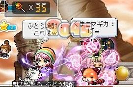 Maple121111_233801.jpg