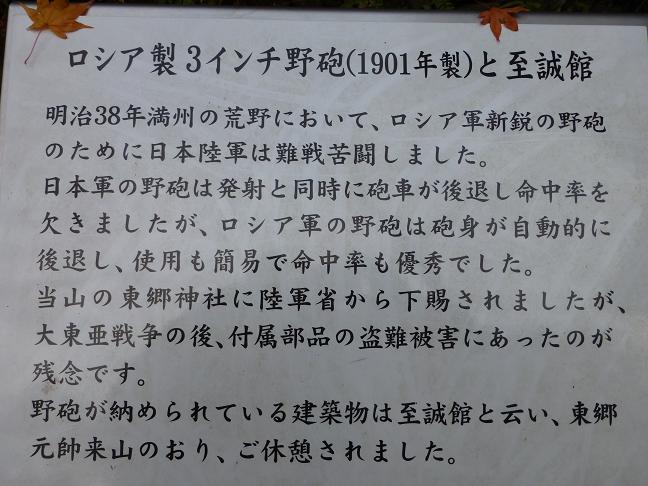 P1030592_20121213125844.jpg
