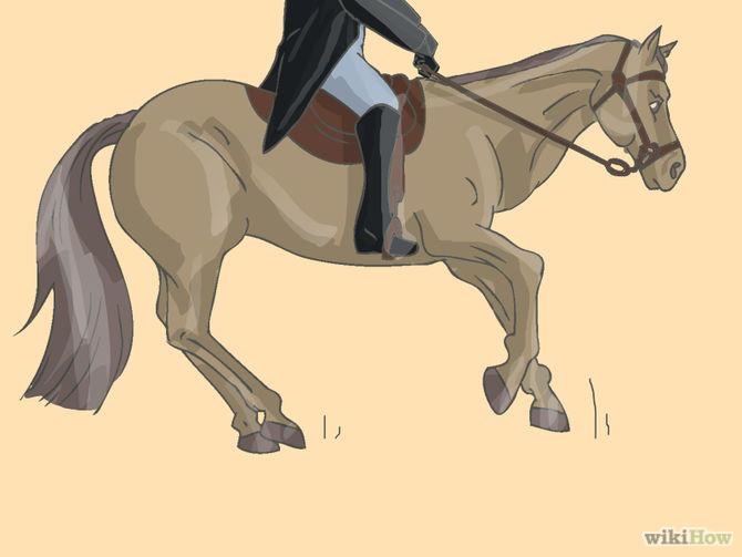 670px-Teach-Your-Horse-to-Piaffe-Step-1.jpg