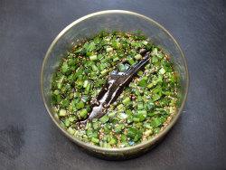 海苔ラー油ニラ素麺11