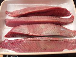 鰹のにぎり寿司05
