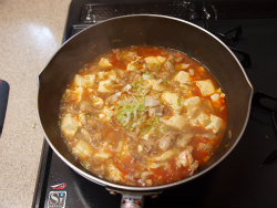鶏マーボー豆腐14