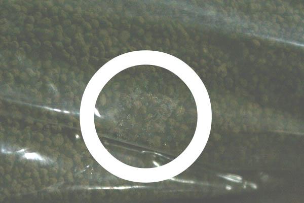 120906-6.jpg