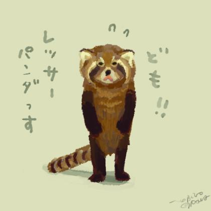 I am lesser panda.