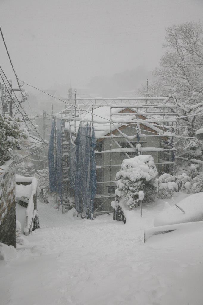 2014-02-10 大雪