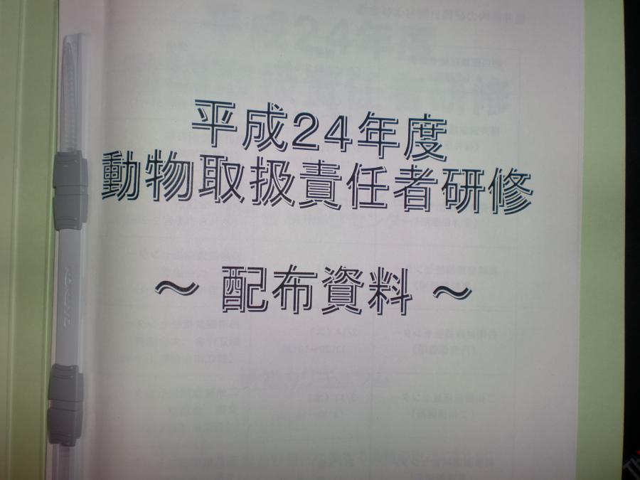 001_convert_20130312213845.jpg