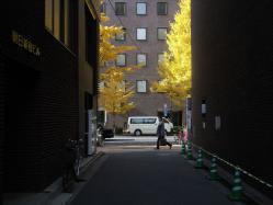 2012122207.jpg