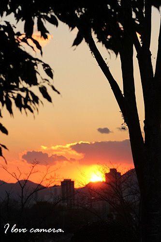 IMG_2013_11_29_9999_96夕陽6