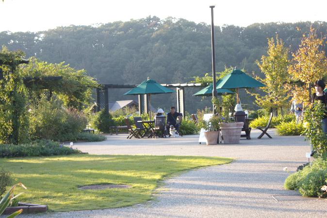 丘陵公園風景
