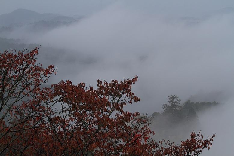 吉野山、4