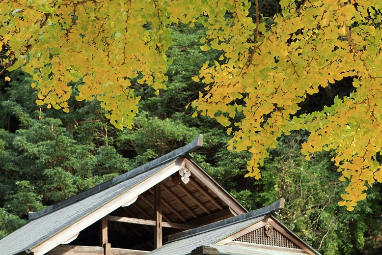 西河十二社神社、5