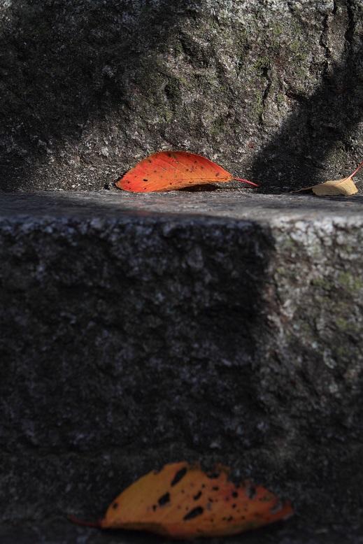 紀三井寺、5