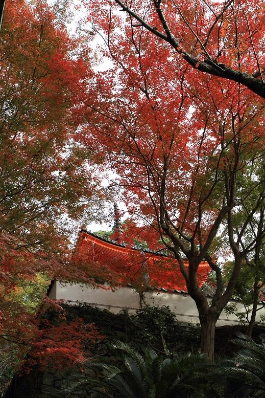紀三井寺、11