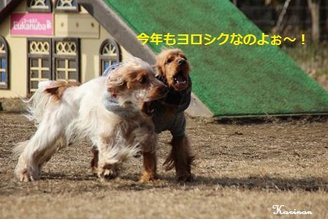 ブログ 1.5 ① IMG_5870
