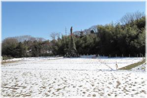 130119G 012雪どん