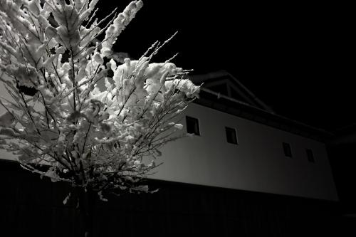 2012_1207_yuki.jpg