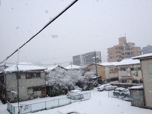 雪景色0114写真