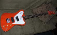 Fenderbird b (3)