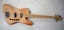Fenderbird b (2)