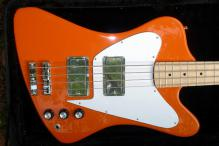 Fenderbird a (2)