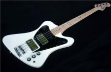 Fenderbird a (3)