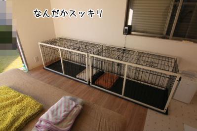 2012_12_08_9999_1.jpg