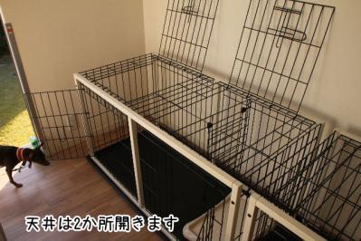 2012_12_08_9999_5.jpg