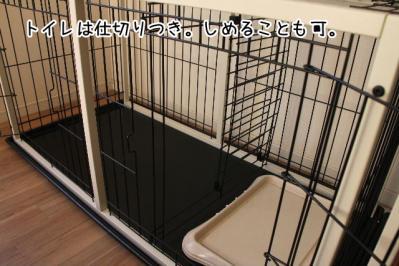 2012_12_08_9999_7.jpg