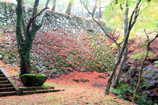 荘厳寺の石垣紅葉