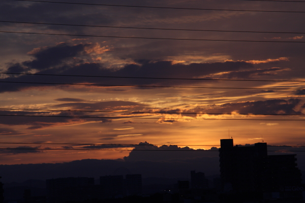 141099-dawn-05.jpg