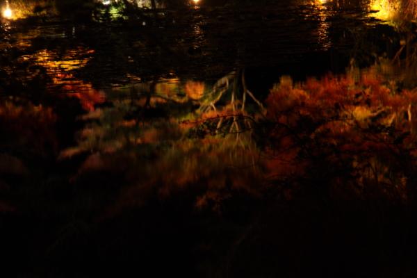 141122-higashi-05.jpg