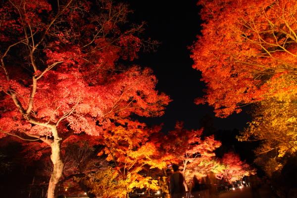 141122-higashi-13.jpg