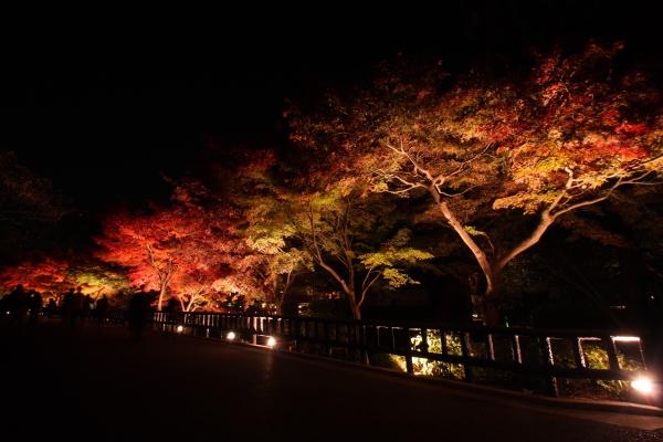 141122-higashi-15.jpg