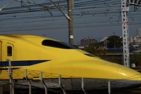 141124-yellow-08.jpg