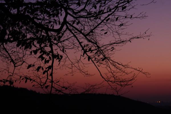 141127-sunset-15.jpg