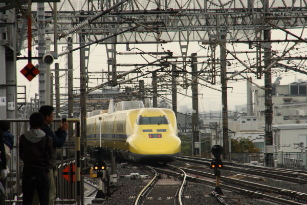 141201-yellow-15.jpg