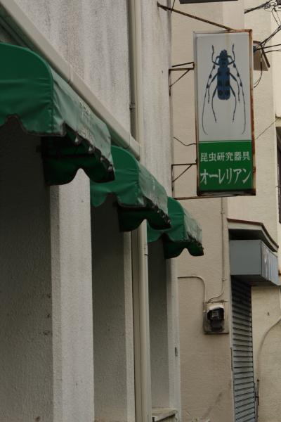141207-utsu-19.jpg