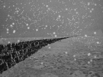 氷点下70度の激寒の中、25万の人々の死の行進が始まった・・・
