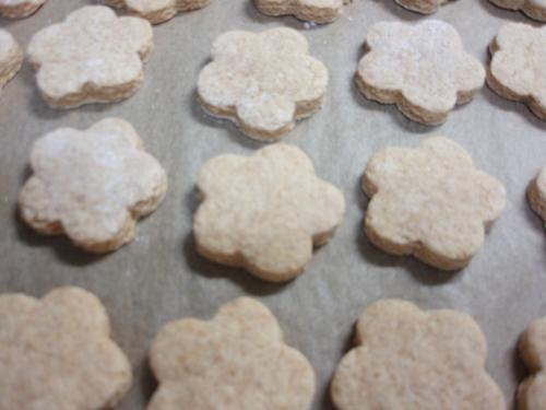 ハードクッキーに変身