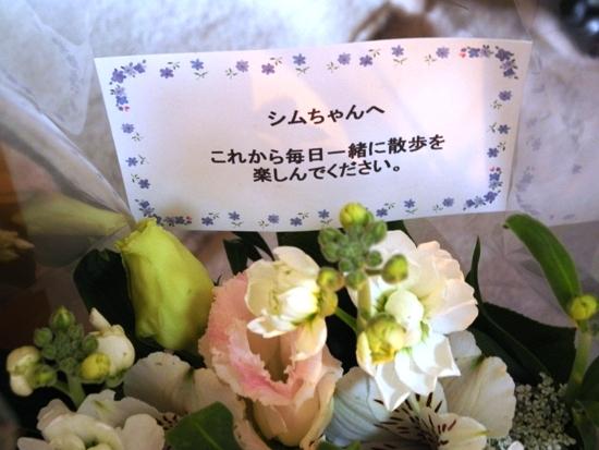 20140203 Sym シムを千葉に迎えに行く (44)