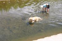 川へ画04