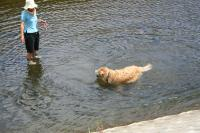 川へ画07