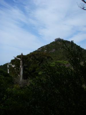 201204屋久島05