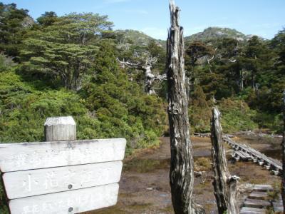 201204屋久島06