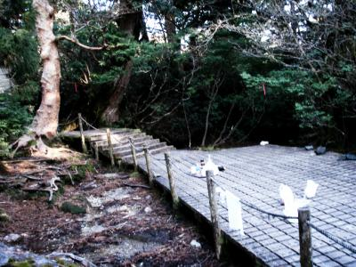 201204屋久島18