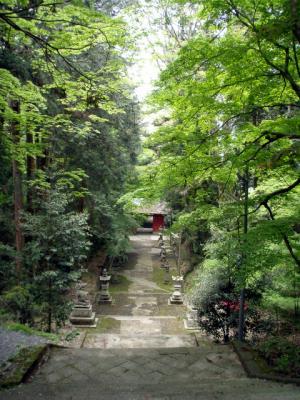 20120508墓参